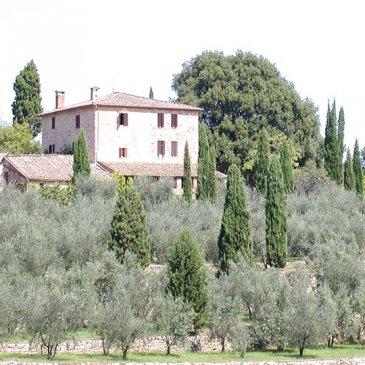 Farmhouse Il Leccio in Siena