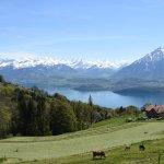 Bernese Oberland Villas